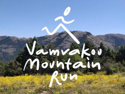 ΝΕΑ ΙΣΤΟΣΕΛΙΔΑ: Στον 'αέρα' η νέα ιστοσελίδα  για τον αγώνα Vamvakou Mountain Run